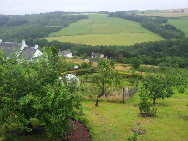 A photo overlooking the orchard in a valley
