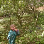 A photo of a child holding an apple and smiling under an apple tree