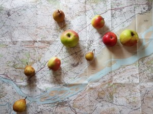 Fruit map